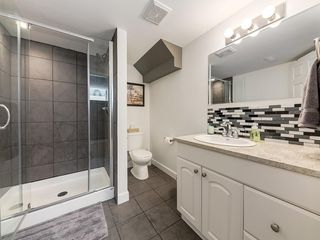 Photo 37: 247 COPPERFIELD Manor SE in Calgary: Copperfield Detached for sale : MLS®# C4297569
