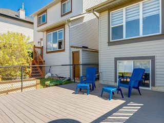Photo 39: 247 COPPERFIELD Manor SE in Calgary: Copperfield Detached for sale : MLS®# C4297569