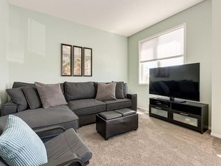 Photo 15: 247 COPPERFIELD Manor SE in Calgary: Copperfield Detached for sale : MLS®# C4297569