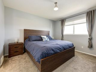 Photo 19: 247 COPPERFIELD Manor SE in Calgary: Copperfield Detached for sale : MLS®# C4297569