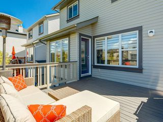 Photo 44: 247 COPPERFIELD Manor SE in Calgary: Copperfield Detached for sale : MLS®# C4297569
