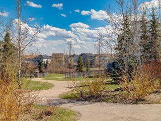 Photo 42: 247 COPPERFIELD Manor SE in Calgary: Copperfield Detached for sale : MLS®# C4297569