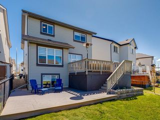 Photo 47: 247 COPPERFIELD Manor SE in Calgary: Copperfield Detached for sale : MLS®# C4297569