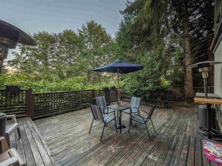 Photo 19: 220 STEVENS DRIVE in West Vancouver: British Properties House for sale : MLS®# R2487804