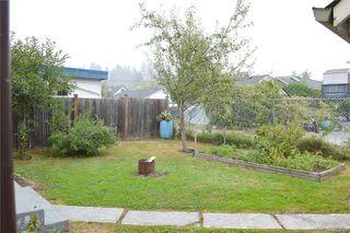 Photo 6: 4883 Elizabeth St in : PA Port Alberni House for sale (Port Alberni)  : MLS®# 855871