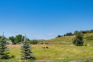 Photo 49: 354015 Meridian Street: Rural Foothills County Detached for sale : MLS®# A1058465