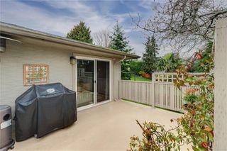 Photo 7: 3637 Bridgeport Pl in : SE Maplewood House for sale (Saanich East)  : MLS®# 862838