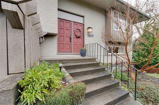 Photo 29: 3637 Bridgeport Pl in : SE Maplewood House for sale (Saanich East)  : MLS®# 862838
