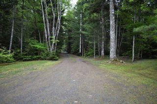 Photo 10: 341 DOUBLE LAKE Road in North Range: 401-Digby County Residential for sale (Annapolis Valley)  : MLS®# 202006703