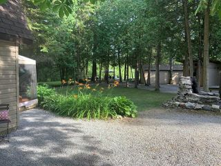 Photo 28: 75 Mcguire Beach Road in Kawartha Lakes: Rural Eldon House (Bungalow) for sale : MLS®# X4838676