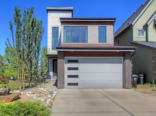 Main Photo: 48 WALDEN Terrace SE in Calgary: Walden Detached for sale : MLS®# A1020763