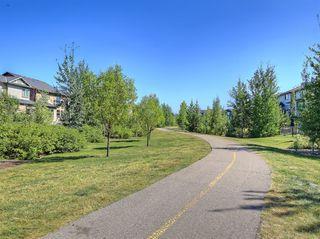 Photo 36: 48 WALDEN Terrace SE in Calgary: Walden Detached for sale : MLS®# A1020763