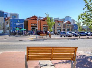 Photo 39: 48 WALDEN Terrace SE in Calgary: Walden Detached for sale : MLS®# A1020763