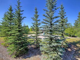 Photo 34: 48 WALDEN Terrace SE in Calgary: Walden Detached for sale : MLS®# A1020763