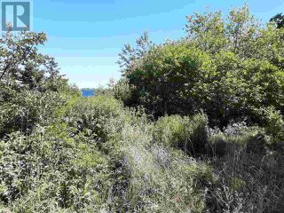 Photo 5: Lot Long Cove Road in Port Medway: Vacant Land for sale : MLS®# 202017267
