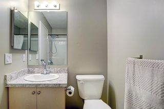 Photo 20: 4104 73 Erin Woods Court SE in Calgary: Erin Woods Apartment for sale : MLS®# A1042999