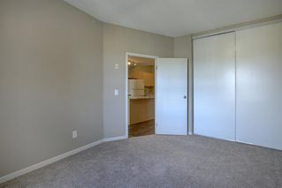 Photo 17: 4104 73 Erin Woods Court SE in Calgary: Erin Woods Apartment for sale : MLS®# A1042999