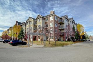 Photo 27: 4104 73 Erin Woods Court SE in Calgary: Erin Woods Apartment for sale : MLS®# A1042999