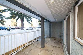 Photo 28: 215 10404 24 Avenue in Edmonton: Zone 16 Carriage for sale : MLS®# E4222478