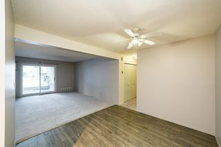 Photo 13: 215 10404 24 Avenue in Edmonton: Zone 16 Carriage for sale : MLS®# E4222478