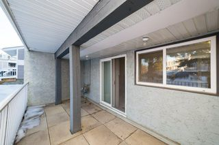 Photo 29: 215 10404 24 Avenue in Edmonton: Zone 16 Carriage for sale : MLS®# E4222478