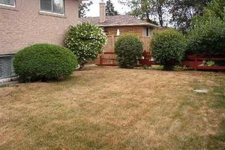 Photo 7: 19 Morning Dew Road: Freehold for sale (E10: TORONTO)