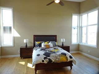Photo 20: 381 MEADOWVIEW Drive: Fort Saskatchewan House for sale : MLS®# E4167843