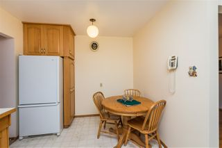 Photo 18: 11128 53 Avenue NW in Edmonton: Zone 15 House for sale : MLS®# E4211239