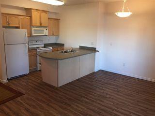 Photo 5: #228 16807 100 Avenue in Edmonton: Zone 22 Condo for sale : MLS®# E4173257