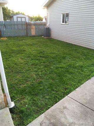 Photo 40: 8316 42 Avenue in Edmonton: Zone 29 House for sale : MLS®# E4183614
