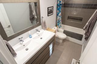 Photo 14: 8316 42 Avenue in Edmonton: Zone 29 House for sale : MLS®# E4183614