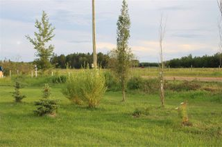 Photo 30: 60213 Rge Rd 233: Rural Thorhild County House for sale : MLS®# E4184669
