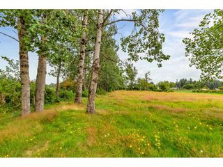 Photo 36: 1694 CLEARBROOK Road in Abbotsford: Poplar House for sale : MLS®# R2481050