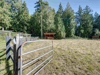 Photo 31: 981 CHAMBERLIN Road in Gibsons: Gibsons & Area House for sale (Sunshine Coast)  : MLS®# R2481276