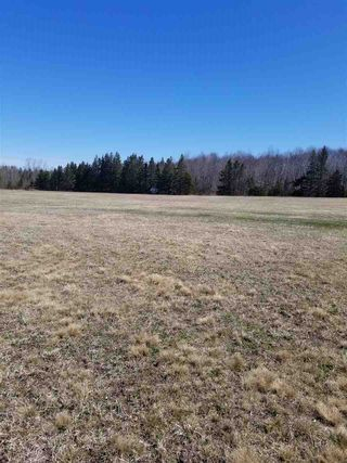 Photo 14: 1317 NOLLETT BECKWITH Road in Victoria Harbour: 404-Kings County Residential for sale (Annapolis Valley)  : MLS®# 202003283