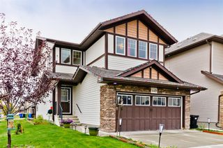 Main Photo: 449 Skyview Ranch Way NE in Calgary: Skyview Ranch Detached for sale : MLS®# A1039547