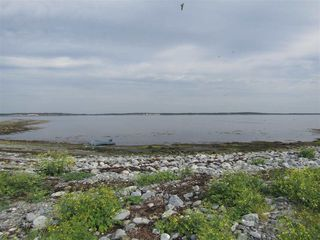 Photo 6: Pages Island in Port La Tour: 407-Shelburne County Vacant Land for sale (South Shore)  : MLS®# 202022571