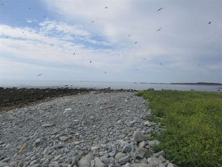 Photo 22: Pages Island in Port La Tour: 407-Shelburne County Vacant Land for sale (South Shore)  : MLS®# 202022571