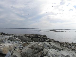 Photo 13: Pages Island in Port La Tour: 407-Shelburne County Vacant Land for sale (South Shore)  : MLS®# 202022571
