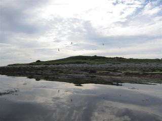 Photo 3: Pages Island in Port La Tour: 407-Shelburne County Vacant Land for sale (South Shore)  : MLS®# 202022571