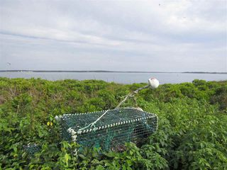 Photo 21: Pages Island in Port La Tour: 407-Shelburne County Vacant Land for sale (South Shore)  : MLS®# 202022571