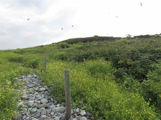 Photo 8: Pages Island in Port La Tour: 407-Shelburne County Vacant Land for sale (South Shore)  : MLS®# 202022571