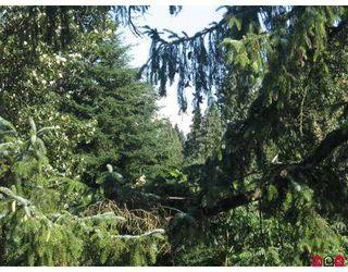 """Photo 9: 410 33478 ROBERTS Avenue in Abbotsford: Central Abbotsford Condo for sale in """"Aspen Creek"""" : MLS®# F2718072"""