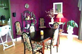 Photo 5: 489 Sarah St in BEAVERTON: House (Bungalow-Raised) for sale (N24: BEAVERTON)  : MLS®# N893816