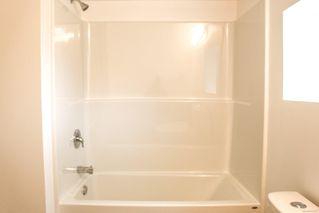 Photo 23: 3316 Aldridge St in : SE Mt Tolmie House for sale (Saanich East)  : MLS®# 857877