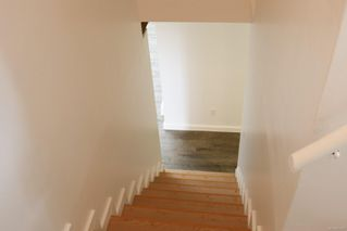 Photo 16: 3316 Aldridge St in : SE Mt Tolmie House for sale (Saanich East)  : MLS®# 857877