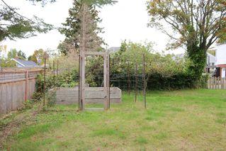 Photo 26: 3316 Aldridge St in : SE Mt Tolmie House for sale (Saanich East)  : MLS®# 857877