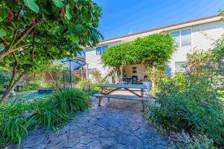 Photo 30: 23938 115 Avenue in Maple Ridge: Cottonwood MR House for sale : MLS®# R2502768