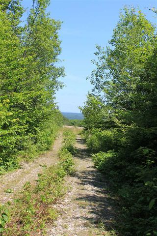 Photo 4: Lot 4 Morganville Road in Morganville: 401-Digby County Vacant Land for sale (Annapolis Valley)  : MLS®# 202012965