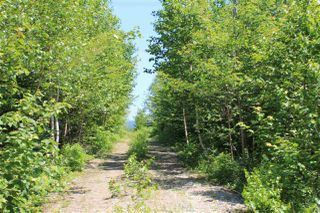 Photo 3: Lot 4 Morganville Road in Morganville: 401-Digby County Vacant Land for sale (Annapolis Valley)  : MLS®# 202012965